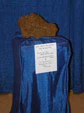 Meteorite at NEAF
